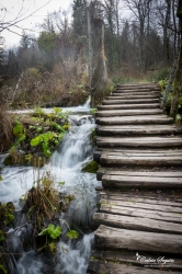 Parc national de Plitvicka jezera (Croatie)