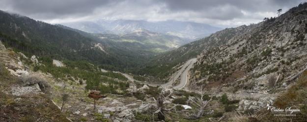 Quelque part au milieu de la Corse