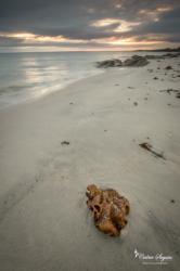 Lever de soleil sur l'île de Batz