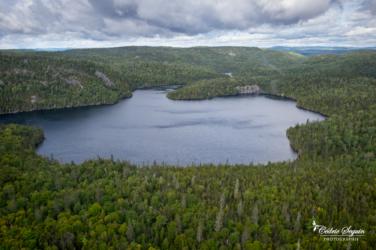 Entre lacs et forêts