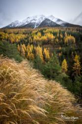 L'hiver arrive dans les Hautes-Alpes (05)