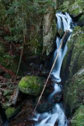 Cascade du Saut de la truite (90)