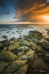 Lever de soleil sur l'île de Batz (29)