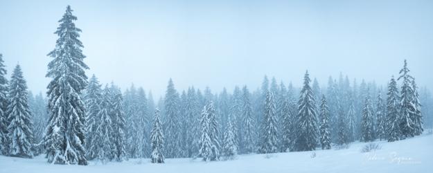 Ambiance hivernale dans le Haut-Jura (39)
